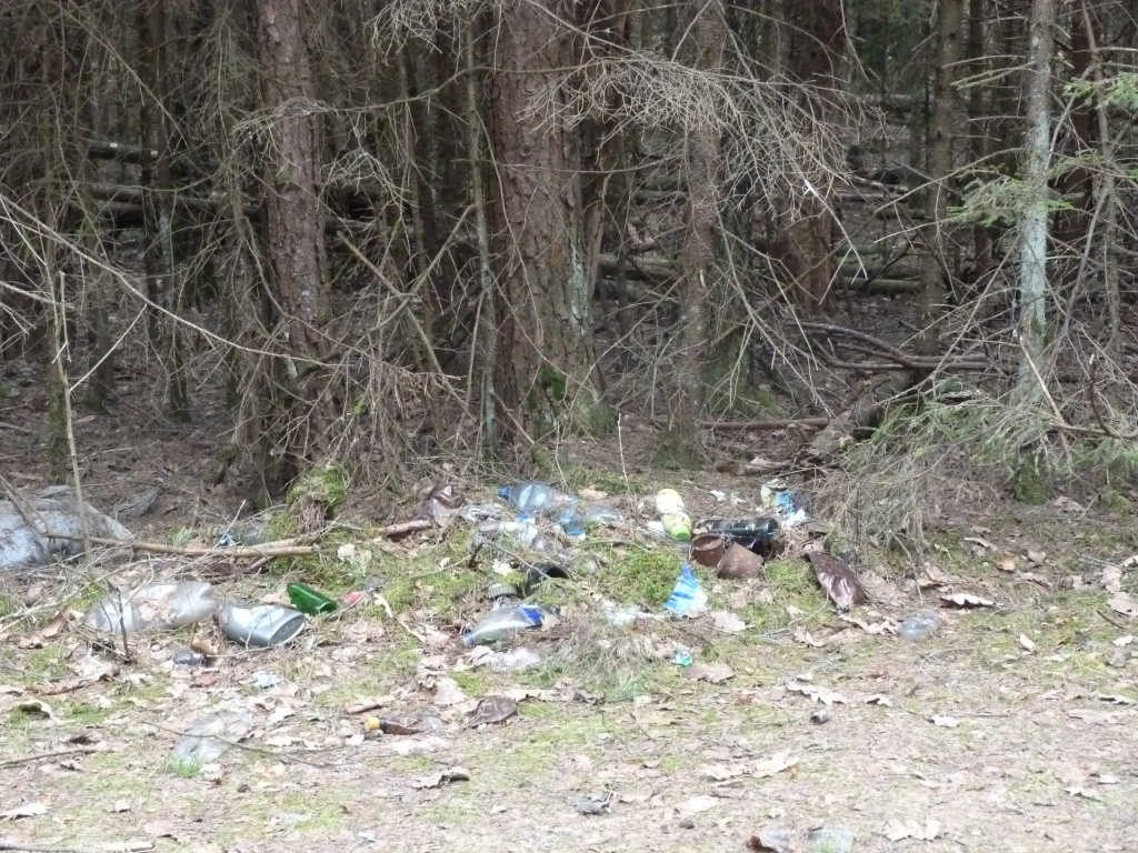 05_09 мусор в лесу.JPG